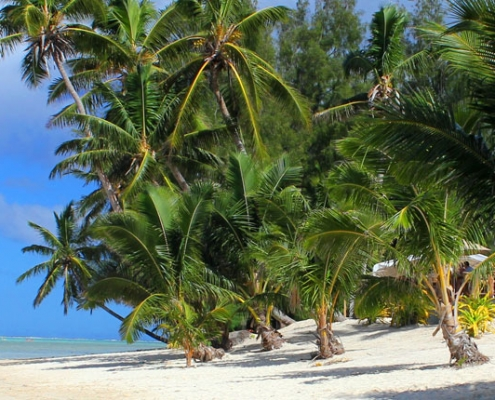 Nautilus Resort Luxury Villas Cook Islands - Nautilus